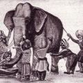 слон и слепые мудрецы