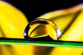drop-of-water-361104_640