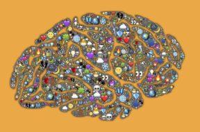 мозг, наполнение
